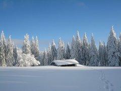 hochzell-winter.jpg